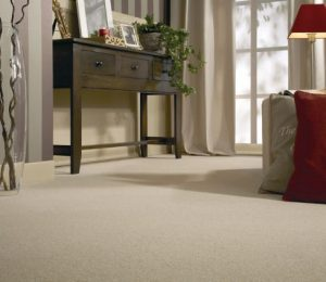 Basement Carpet installers in King City