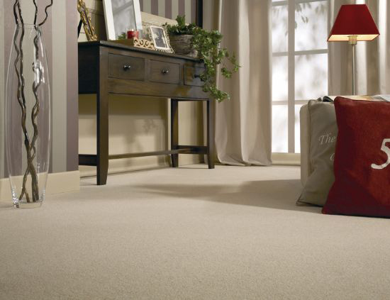 Basement Carpet installers in King City carpet installation services aurora