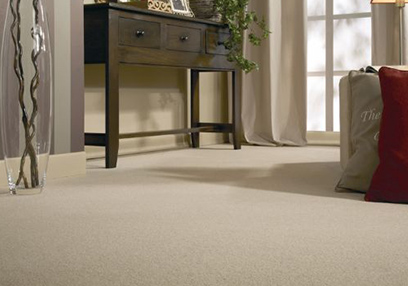 Basement berber carpet installation Toronto services in Toronto
