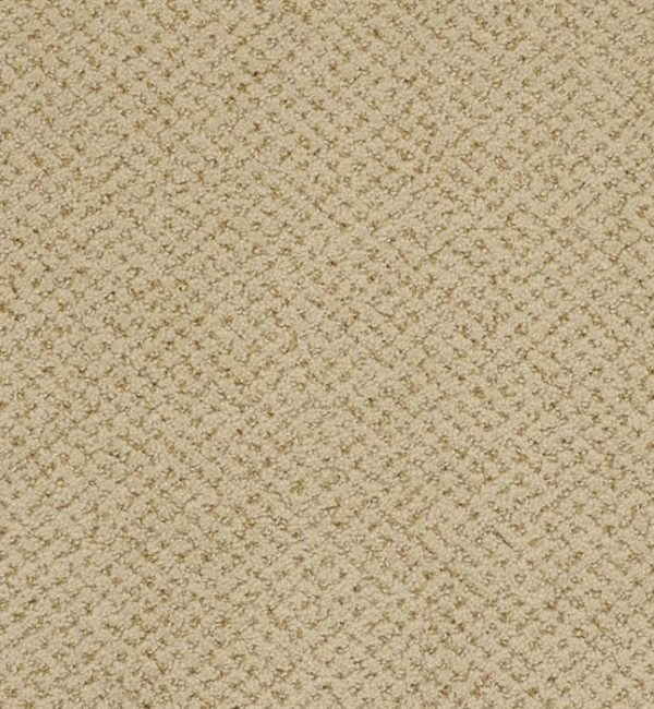 High quality carpet on sales, the best carpet for the bed room and best carpet for basement flooring